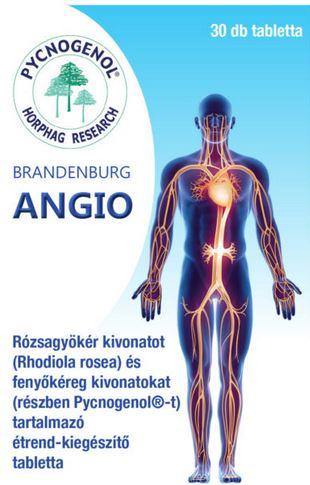 Brandenburg Angio 30x